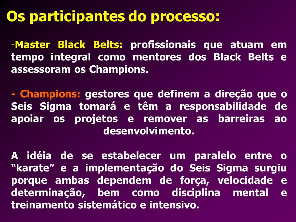 Os participantes do processo: -Master Black Belts: profissionais que atuam em tempo integral como mentores dos Black Belts e assessoram os Champions.