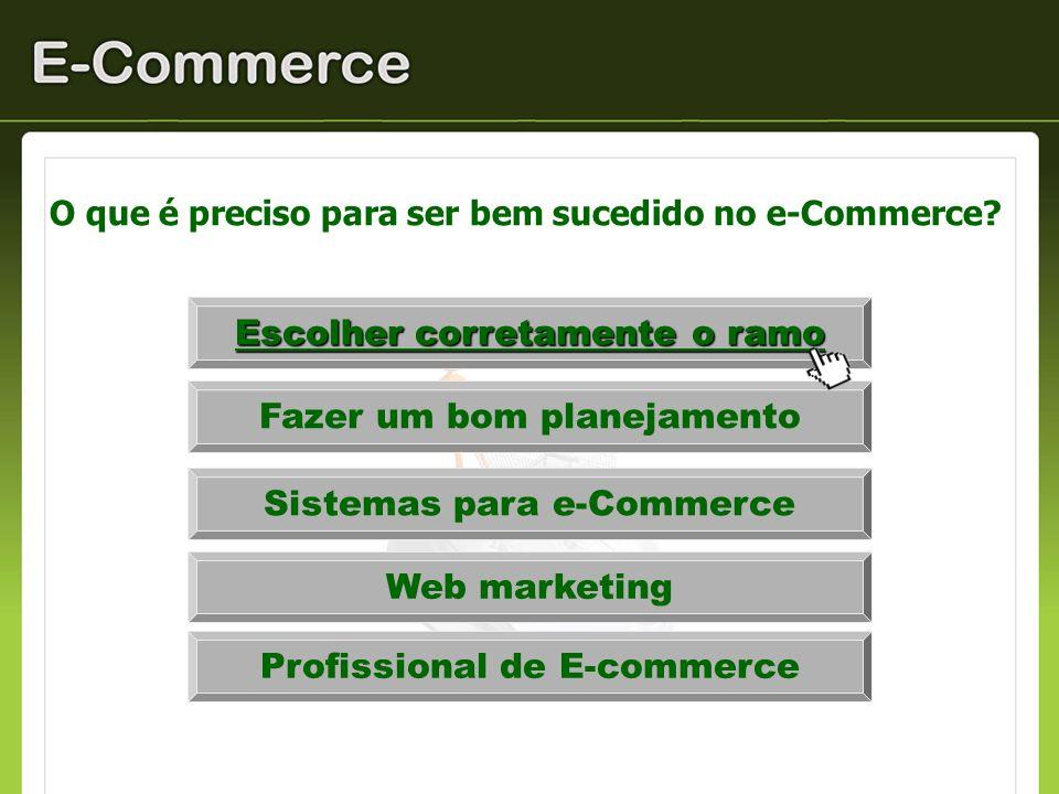 O que é preciso para ser bem sucedido no e-Commerce? Escolher corretamente o ramo Fazer um bom planejamento Sistemas para e-Commerce Web marketing Pro