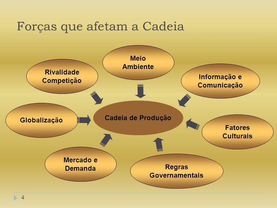 Forças que afetam a Cadeia 4 Cadeia de Produção Informação e Comunicação Fatores Culturais Regras Governamentais Meio Ambiente Rivalidade Competição G
