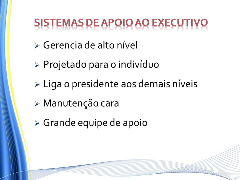Gerencia de alto nível Projetado para o indivíduo Liga o presidente aos demais níveis Manutenção cara Grande equipe de apoio