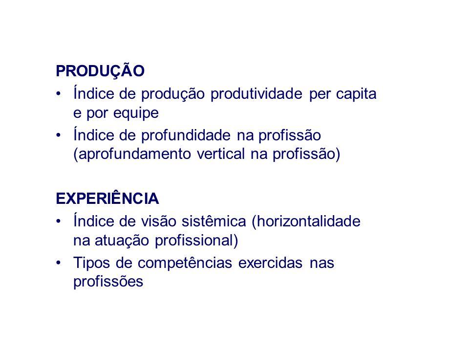PRODUÇÃO Índice de produção produtividade per capita e por equipe Índice de profundidade na profissão (aprofundamento vertical na profissão) EXPERIÊNC