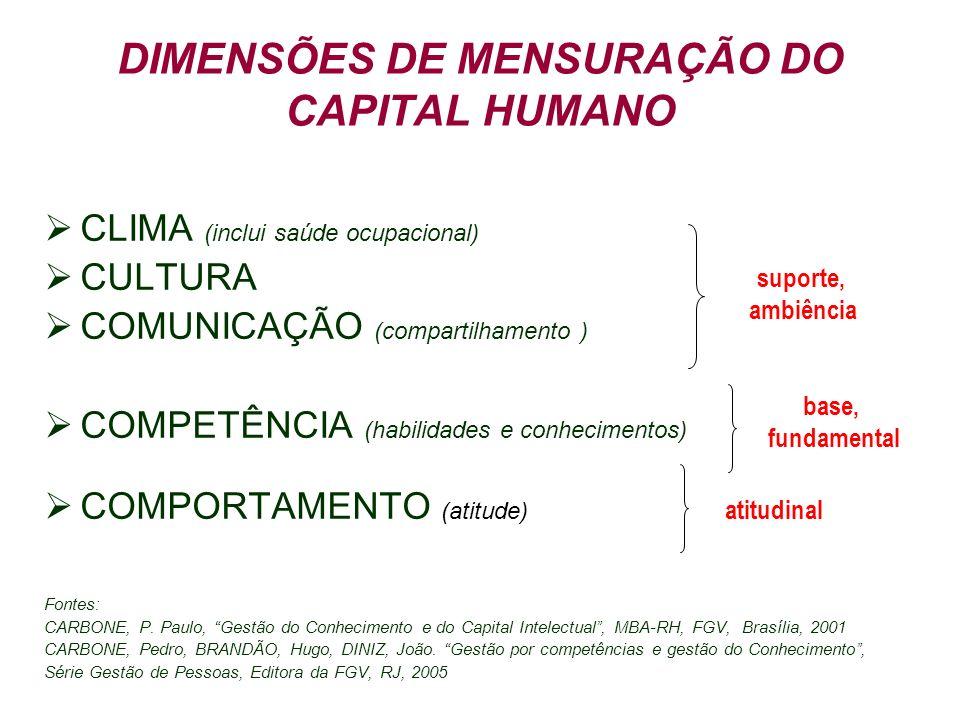 DIMENSÕES DE MENSURAÇÃO DO CAPITAL HUMANO CLIMA (inclui saúde ocupacional) CULTURA COMUNICAÇÃO (compartilhamento ) COMPETÊNCIA (habilidades e conhecim