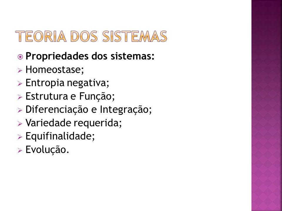 Propriedades dos sistemas: Homeostase; Entropia negativa; Estrutura e Função; Diferenciação e Integração; Variedade requerida; Equifinalidade; Evoluçã