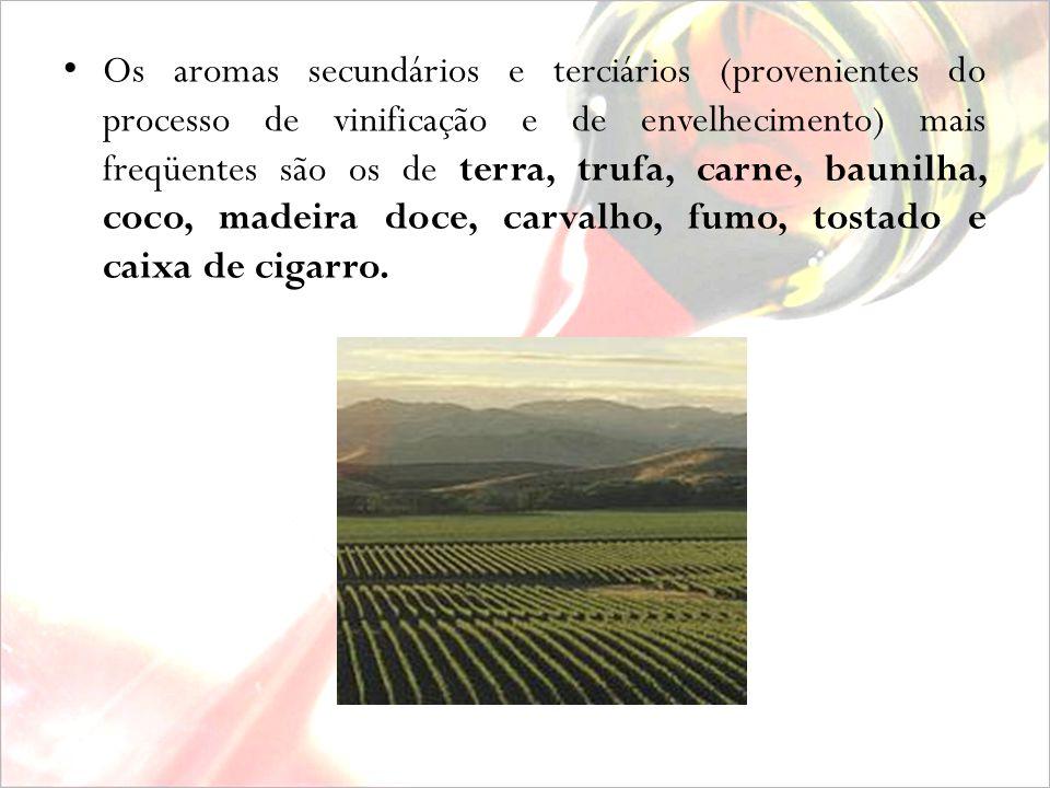 Os outros, menos espetaculares e muito mais acessíveis, são deliciosos vinhos de coloração rubi, com clareza translucida. Na boca surpreende o contras