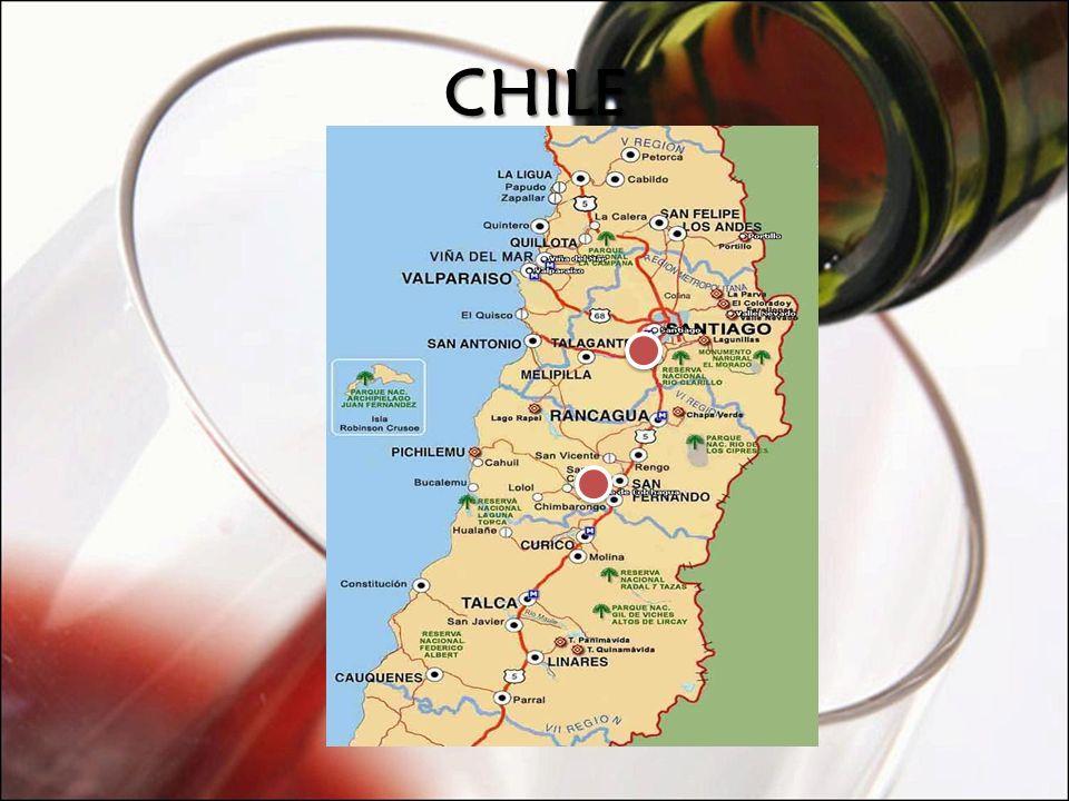 LYBRA Produtor: Quinta do Monte d Oiro País: Portugal Região: Alenquer Safra: 2004 Tipo: Tinto Volume: 750 ml Uva: Syrah (90%) e Tinta Roriz (10%) Vinhedos: Vinhedos proprios localizados na região Sul da Estremadura.