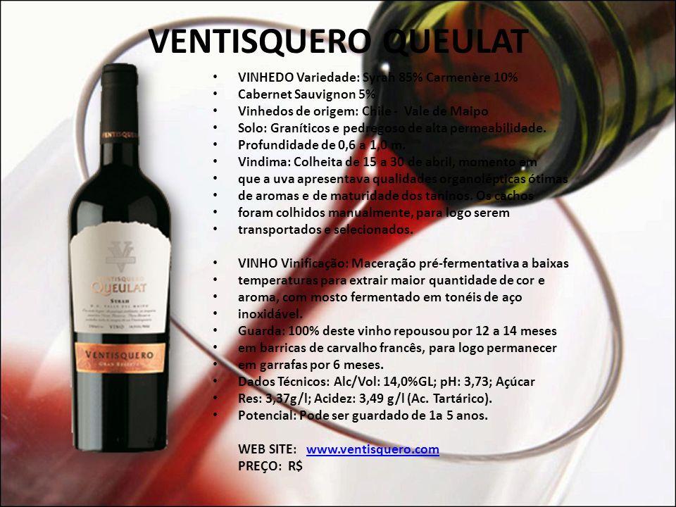 O UTROS VINHOS SUGERIDOS VENTISQUERO QUEULAT (CHILE) BREMERTON SELKIRK (AUSTRÁLIA) DONA ERMELINDA (PORTUGAL) PLANETA SYRAH (ITÁLIA)