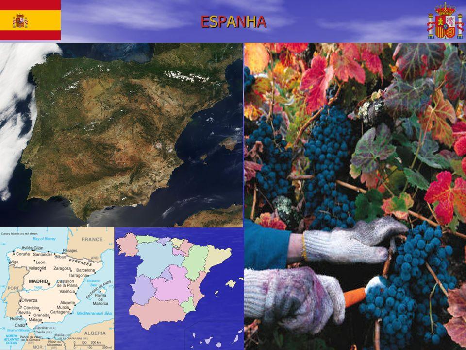 CLOS MOGADORCLOS MOGADORCLOS MOGADORCLOS MOGADOR CLOS MOGADOR 2006 – PRIORAT 14,5% Amplitude e riqueza - U$ 189,50 R$ 399,00 Clos Mogador é um dos maiores vinhos espanhóis, o tinto lendário que consagrou o Priorato como uma das maiores regiões produtoras da Espanha.