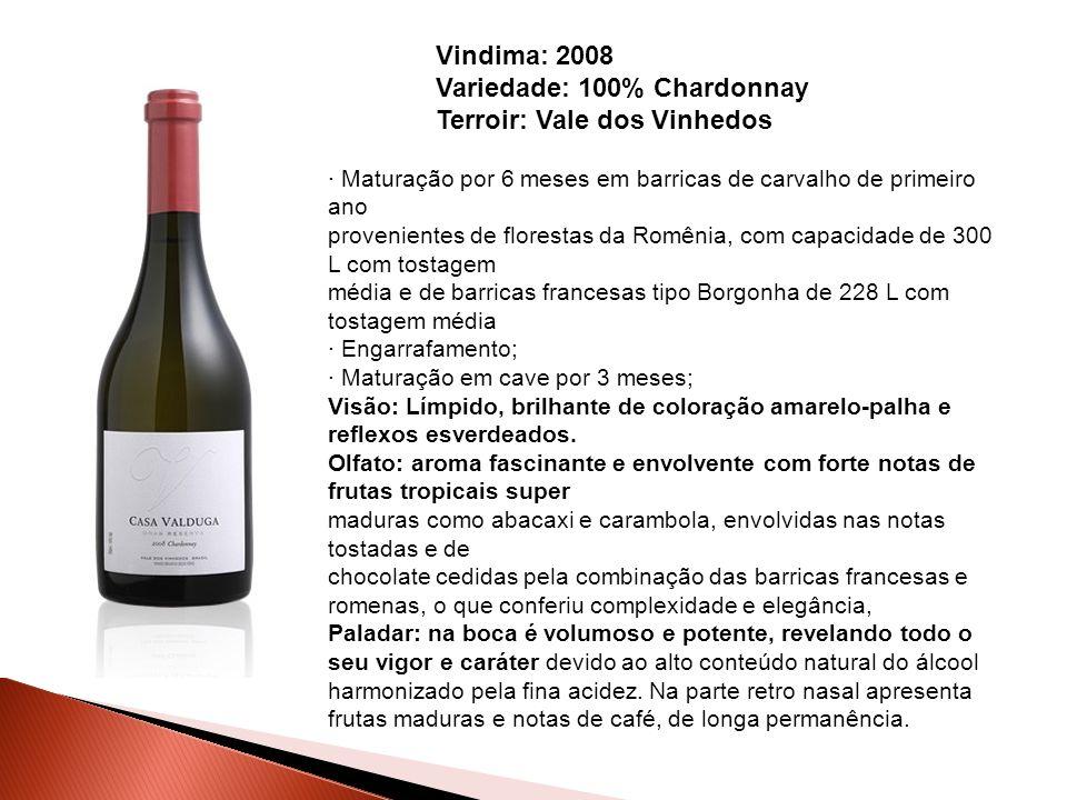 Vindima: 2008 Variedade: 100% Chardonnay Terroir: Vale dos Vinhedos · Maturação por 6 meses em barricas de carvalho de primeiro ano provenientes de fl