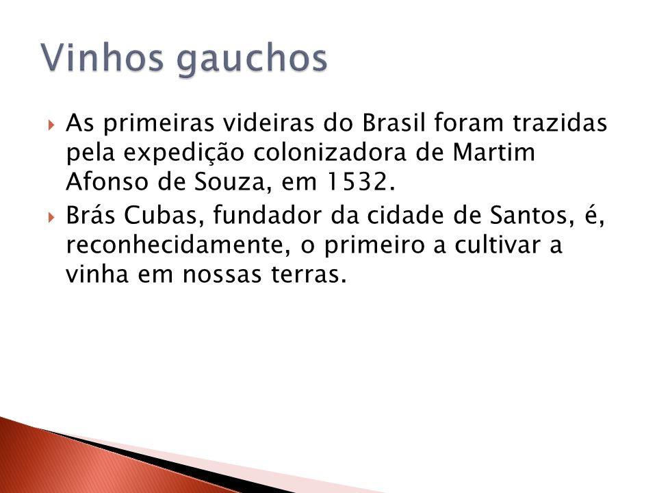 As primeiras videiras do Brasil foram trazidas pela expedição colonizadora de Martim Afonso de Souza, em 1532. Brás Cubas, fundador da cidade de Santo