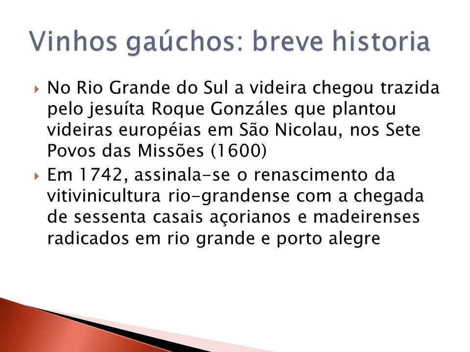 No Rio Grande do Sul a videira chegou trazida pelo jesuíta Roque Gonzáles que plantou videiras européias em São Nicolau, nos Sete Povos das Missões (1