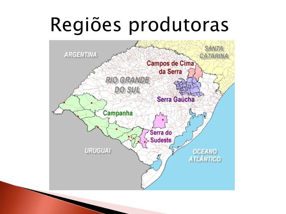Regiões produtoras