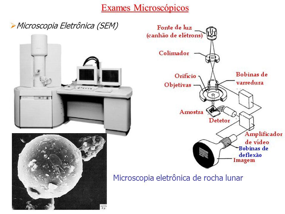 Exames Microscópicos Microscopia Eletrônica (SEM) Microscopia eletrônica de rocha lunar