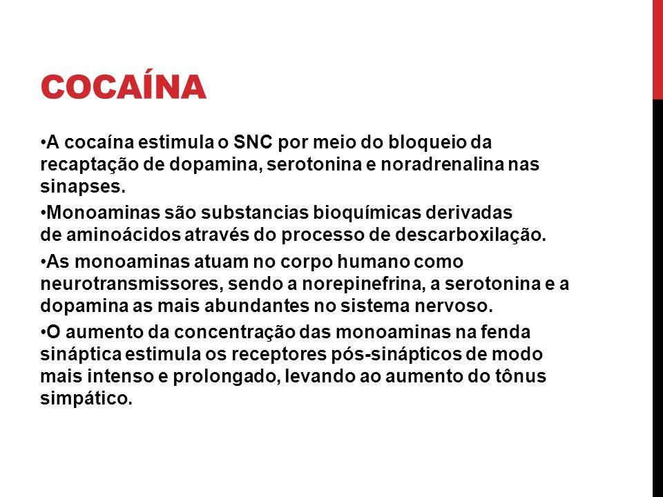 COCAÍNA A cocaína estimula o SNC por meio do bloqueio da recaptação de dopamina, serotonina e noradrenalina nas sinapses. Monoaminas são substancias b