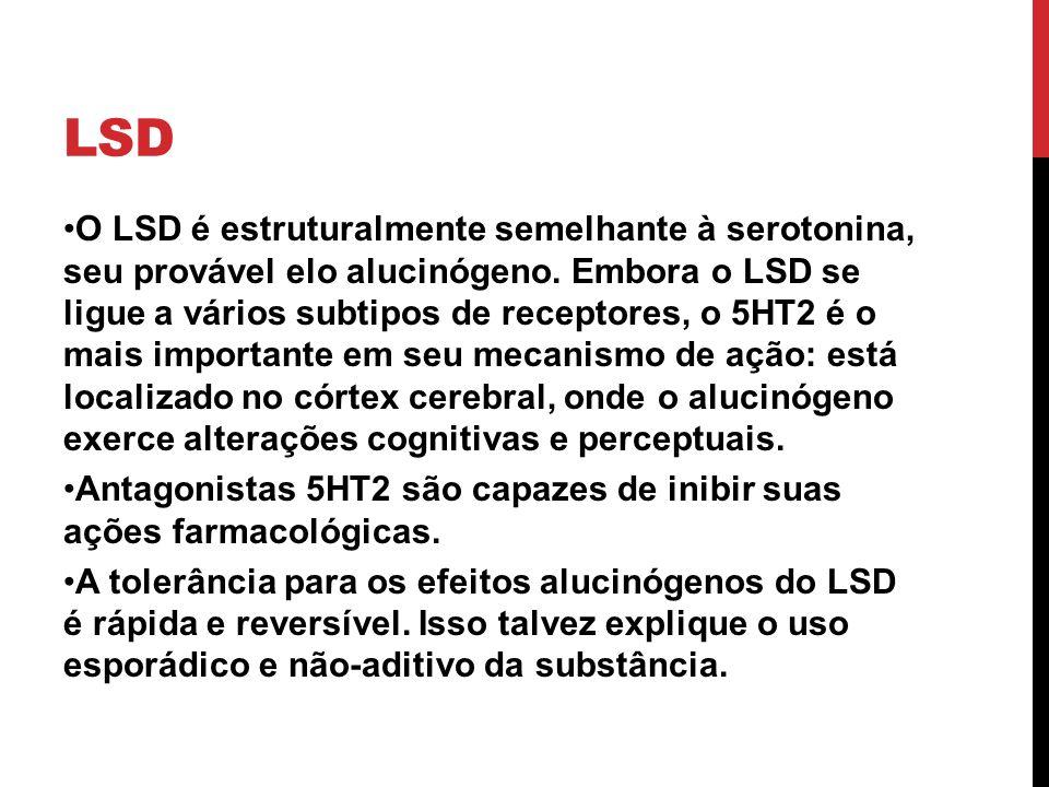 LSD O LSD é estruturalmente semelhante à serotonina, seu provável elo alucinógeno. Embora o LSD se ligue a vários subtipos de receptores, o 5HT2 é o m