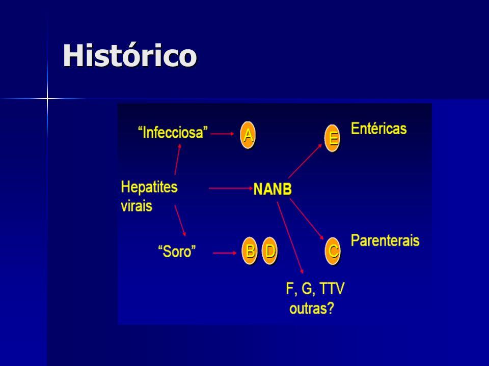 Hepatite E Transmitida por via fecal-oral Transmitida por via fecal-oral Período de incubação de 15 a 60 dias Período de incubação de 15 a 60 dias Aguda, auto-limitada Aguda, auto-limitada Pode apresentar formas clínicas graves em gestantes Pode apresentar formas clínicas graves em gestantes Vírus causador de hepatite mais recentemente identificado, em 1990 Vírus causador de hepatite mais recentemente identificado, em 1990 Patogenia similar à HAV Patogenia similar à HAV