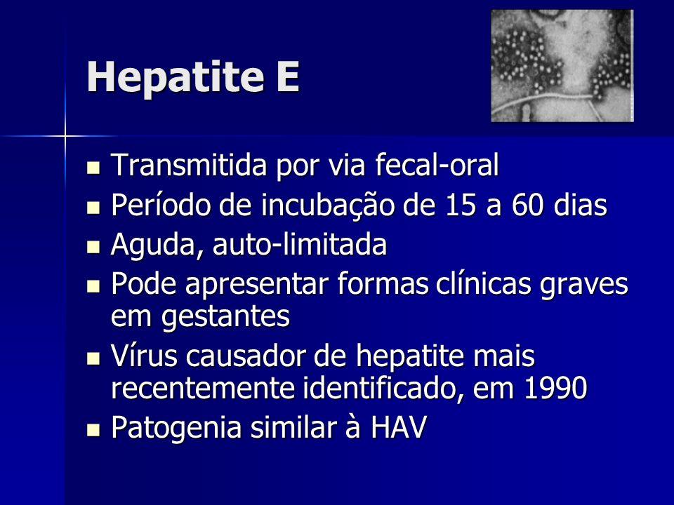 Hepatite E Transmitida por via fecal-oral Transmitida por via fecal-oral Período de incubação de 15 a 60 dias Período de incubação de 15 a 60 dias Agu