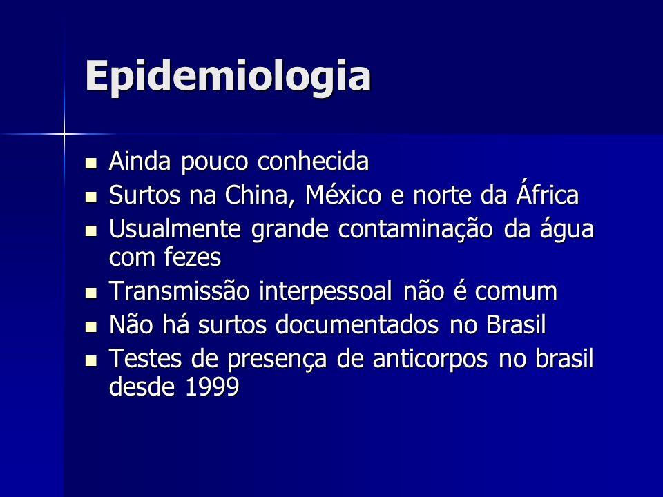 Epidemiologia Ainda pouco conhecida Ainda pouco conhecida Surtos na China, México e norte da África Surtos na China, México e norte da África Usualmen