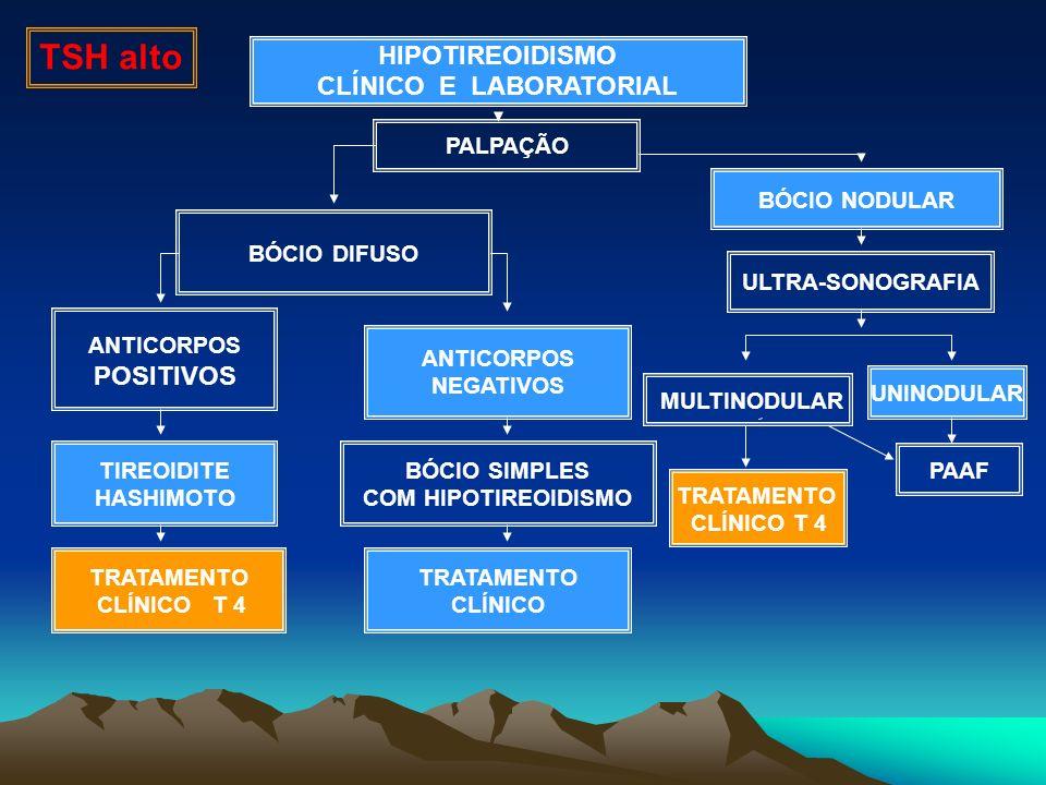 HIPOTIREOIDISMO CLÍNICO E LABORATORIAL BÓCIO NODULAR ANTICORPOS POSITIVOS ULTRA-SONOGRAFIA TRATAMENTO CLÍNICO T 4 PAAF TIREOIDITE HASHIMOTO TRATAMENTO