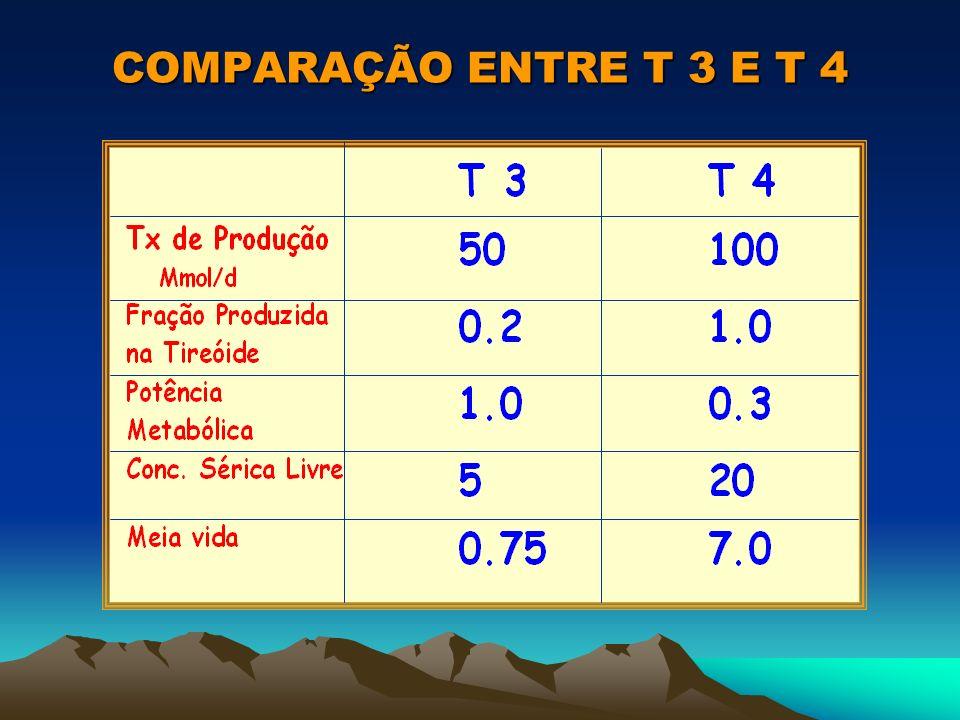 COMPARAÇÃO ENTRE T 3 E T 4