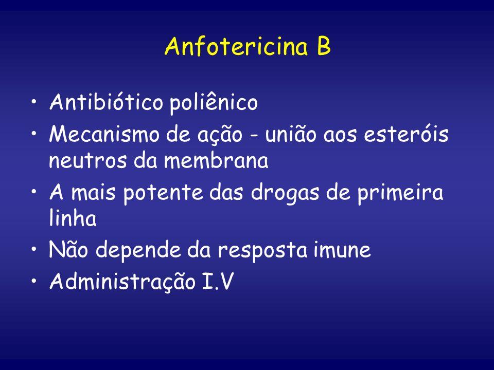 Anfotericina B Antibiótico poliênico Mecanismo de ação - união aos esteróis neutros da membrana A mais potente das drogas de primeira linha Não depend