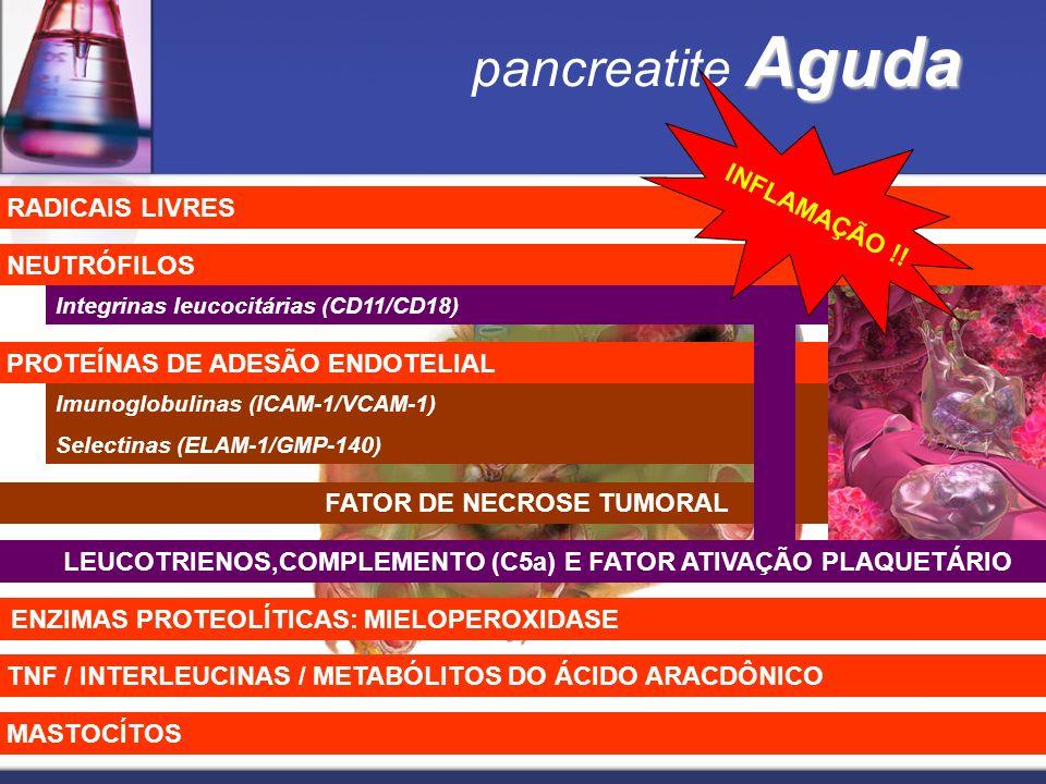 Aguda pancreatite Aguda Imunoglobulinas (ICAM-1/VCAM-1) Selectinas (ELAM-1/GMP-140) PROTEÍNAS DE ADESÃO ENDOTELIAL NEUTRÓFILOS FATOR DE NECROSE TUMORA