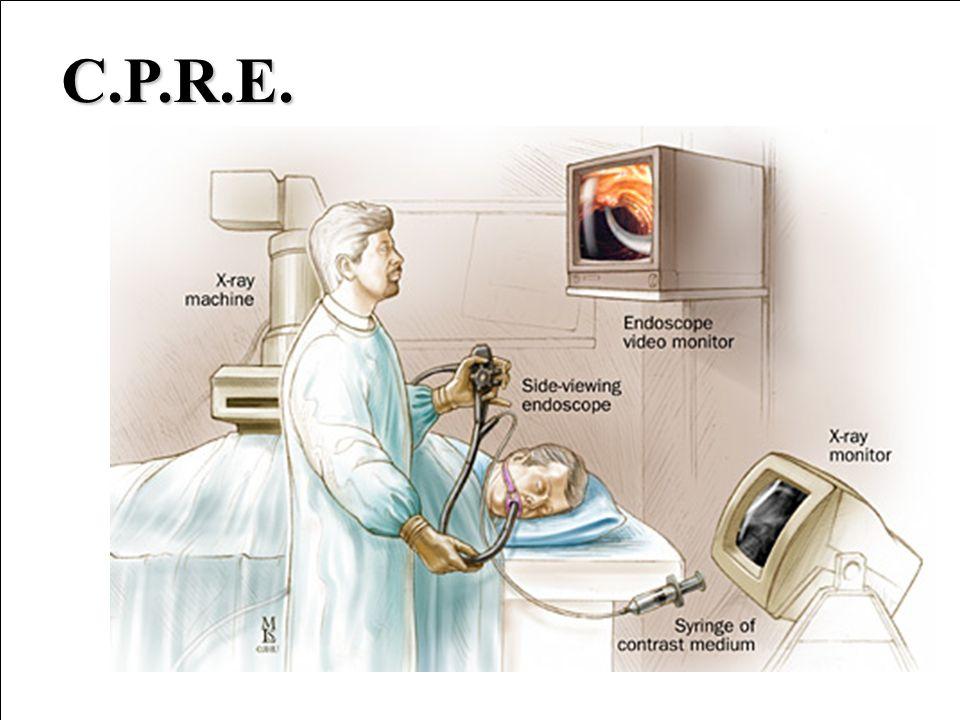 C.P.R.E.