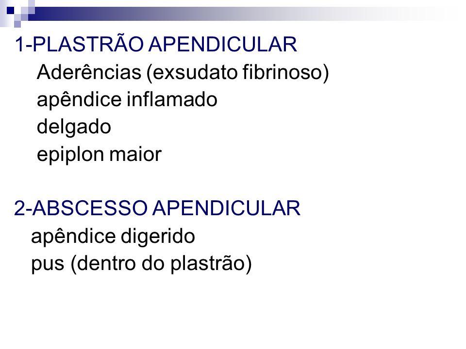 1-PLASTRÃO APENDICULAR Aderências (exsudato fibrinoso) apêndice inflamado delgado epiplon maior 2-ABSCESSO APENDICULAR apêndice digerido pus (dentro d
