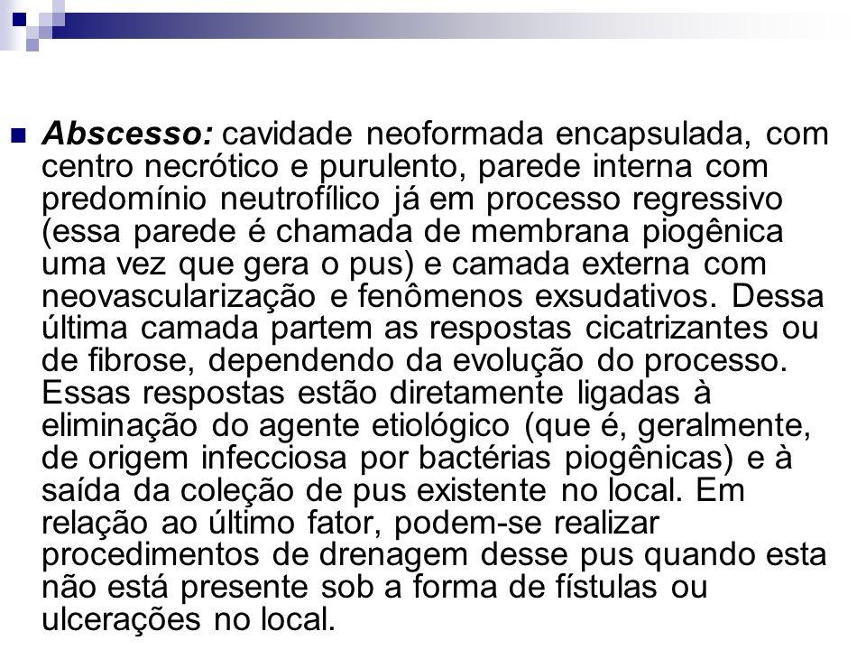 Abscesso: cavidade neoformada encapsulada, com centro necrótico e purulento, parede interna com predomínio neutrofílico já em processo regressivo (ess