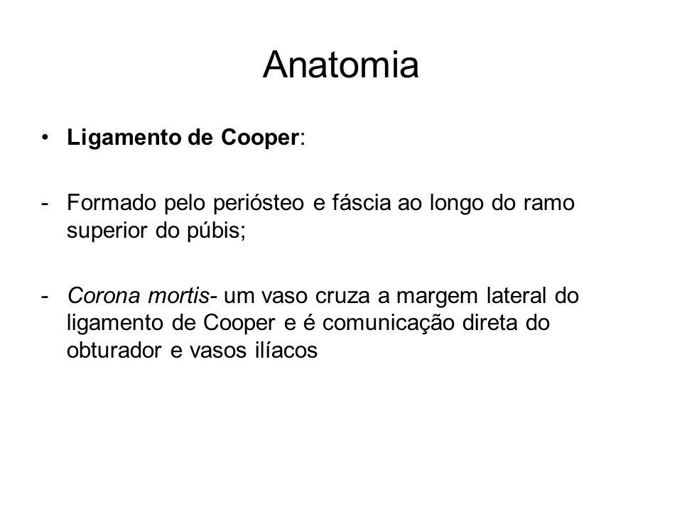 Anatomia Ligamento de Cooper: -Formado pelo periósteo e fáscia ao longo do ramo superior do púbis; -Corona mortis- um vaso cruza a margem lateral do l