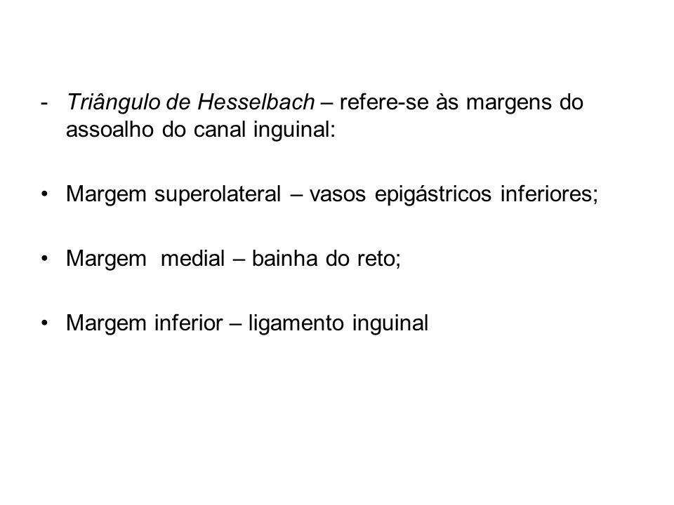 -Triângulo de Hesselbach – refere-se às margens do assoalho do canal inguinal: Margem superolateral – vasos epigástricos inferiores; Margem medial – b