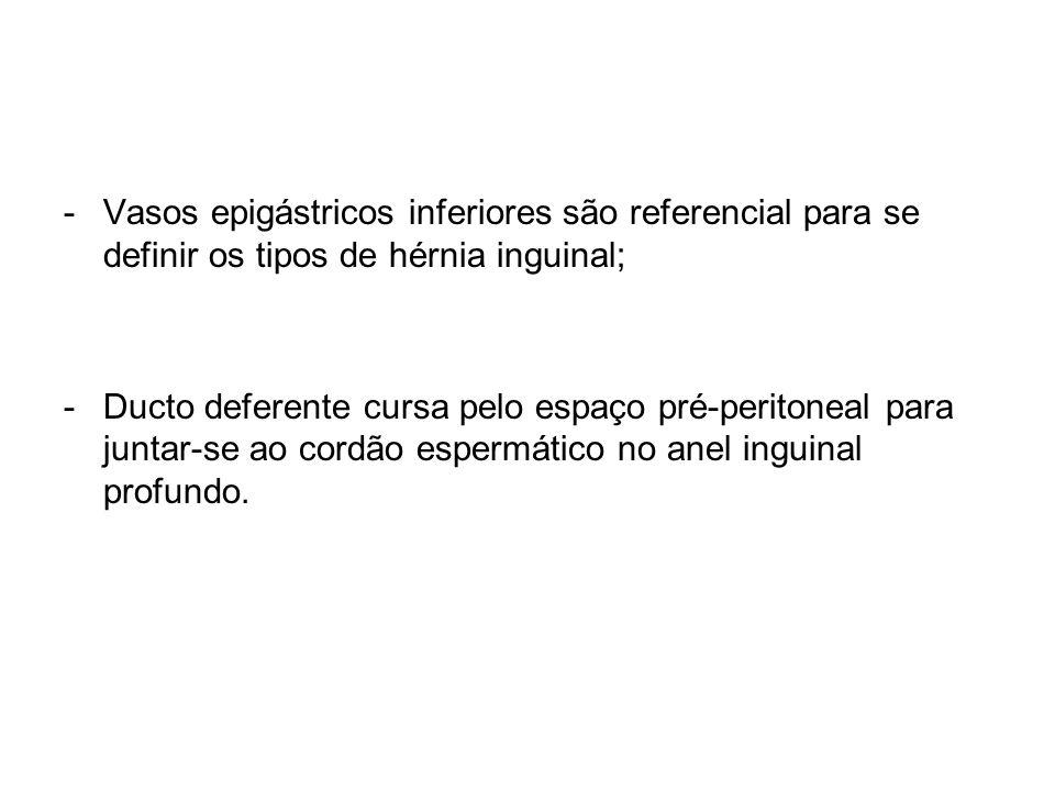 -Vasos epigástricos inferiores são referencial para se definir os tipos de hérnia inguinal; -Ducto deferente cursa pelo espaço pré-peritoneal para jun