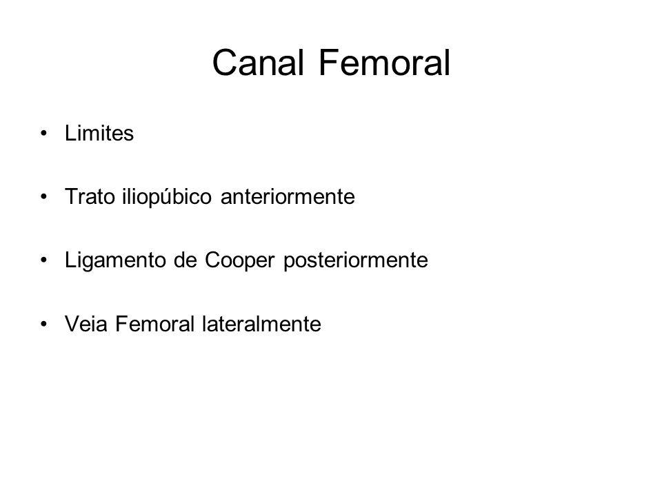 Canal Femoral Limites Trato iliopúbico anteriormente Ligamento de Cooper posteriormente Veia Femoral lateralmente