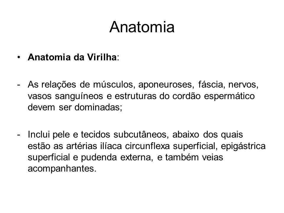 Anatomia Anatomia da Virilha: -As relações de músculos, aponeuroses, fáscia, nervos, vasos sanguíneos e estruturas do cordão espermático devem ser dom