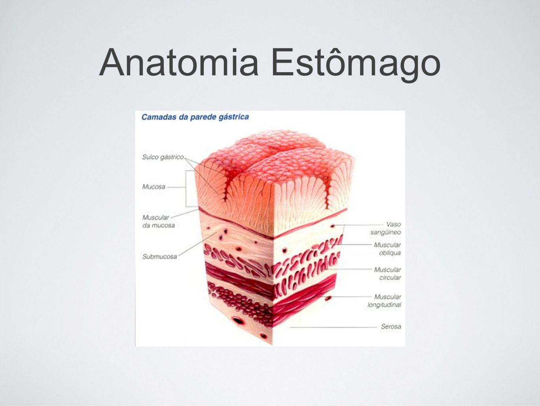 pós-gastrectomia Síndromes