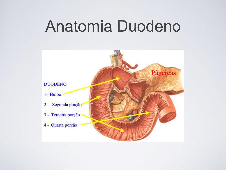 Secundária à ressecção gástrica Síndrome de Dumping: Acontece após a ingestão de uma refeição.