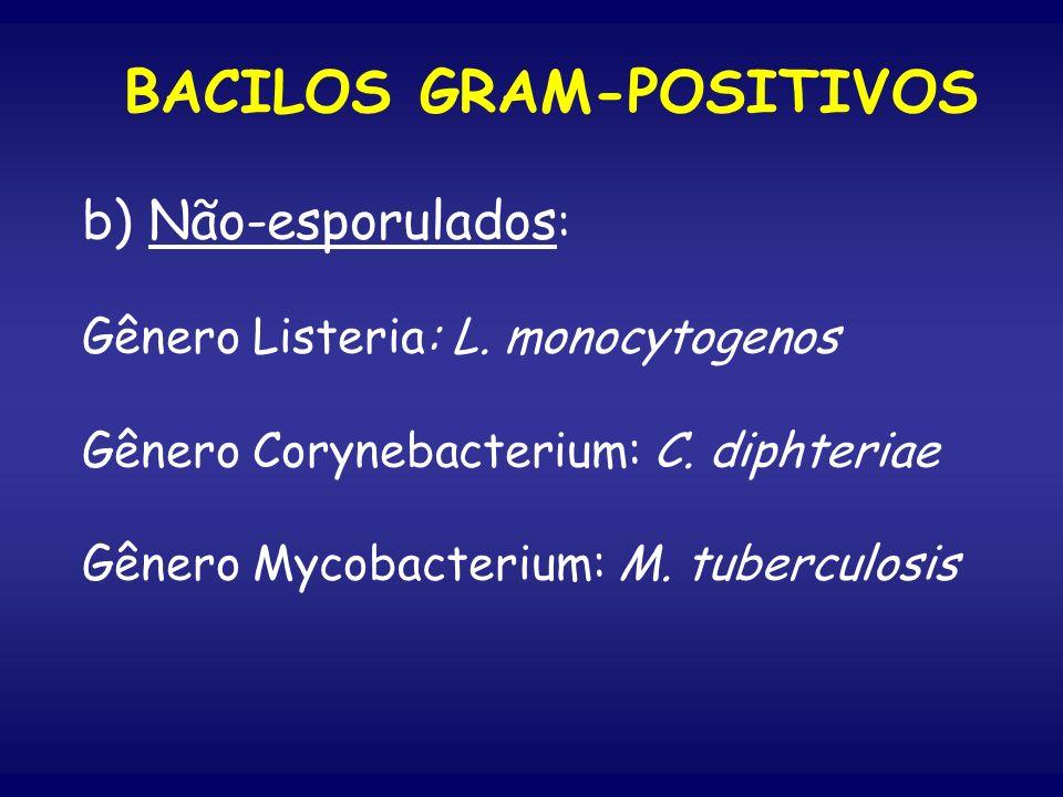 b) Não-esporulados : Gênero Listeria: L. monocytogenos Gênero Corynebacterium: C. diphteriae Gênero Mycobacterium: M. tuberculosis BACILOS GRAM-POSITI