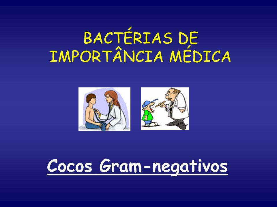 BACTÉRIAS DE IMPORTÂNCIA MÉDICA Cocos Gram-negativos