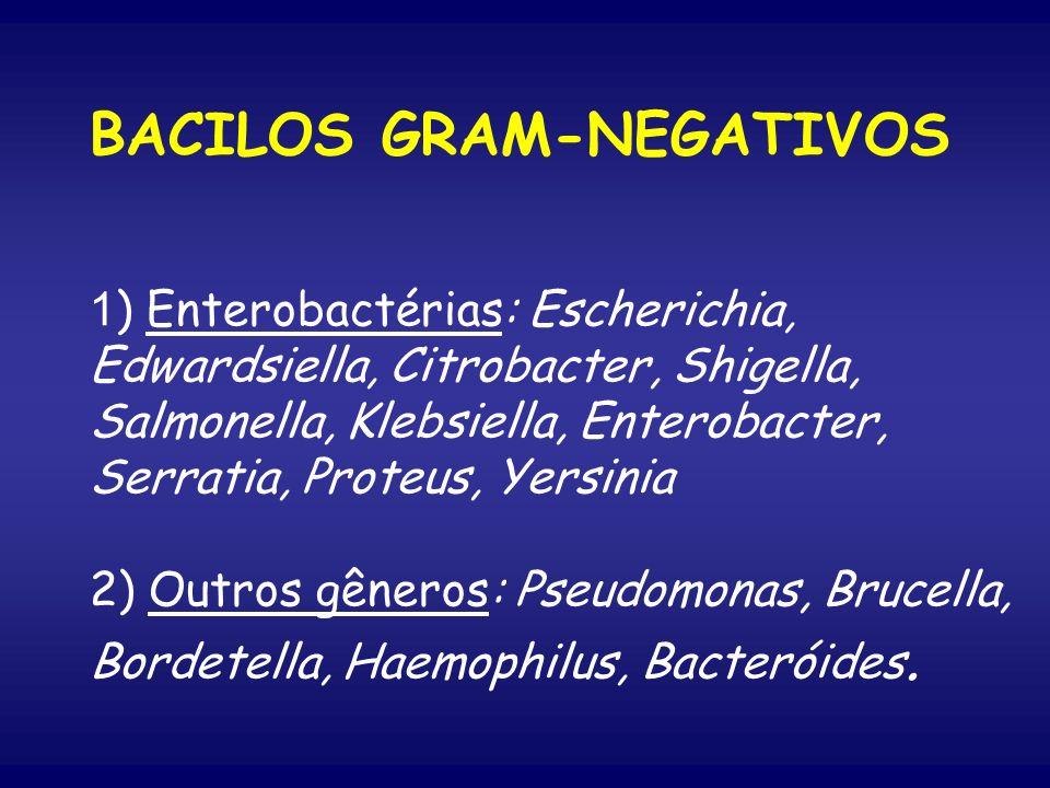 BACILOS GRAM-NEGATIVOS 1 ) Enterobactérias: Escherichia, Edwardsiella, Citrobacter, Shigella, Salmonella, Klebsiella, Enterobacter, Serratia, Proteus,