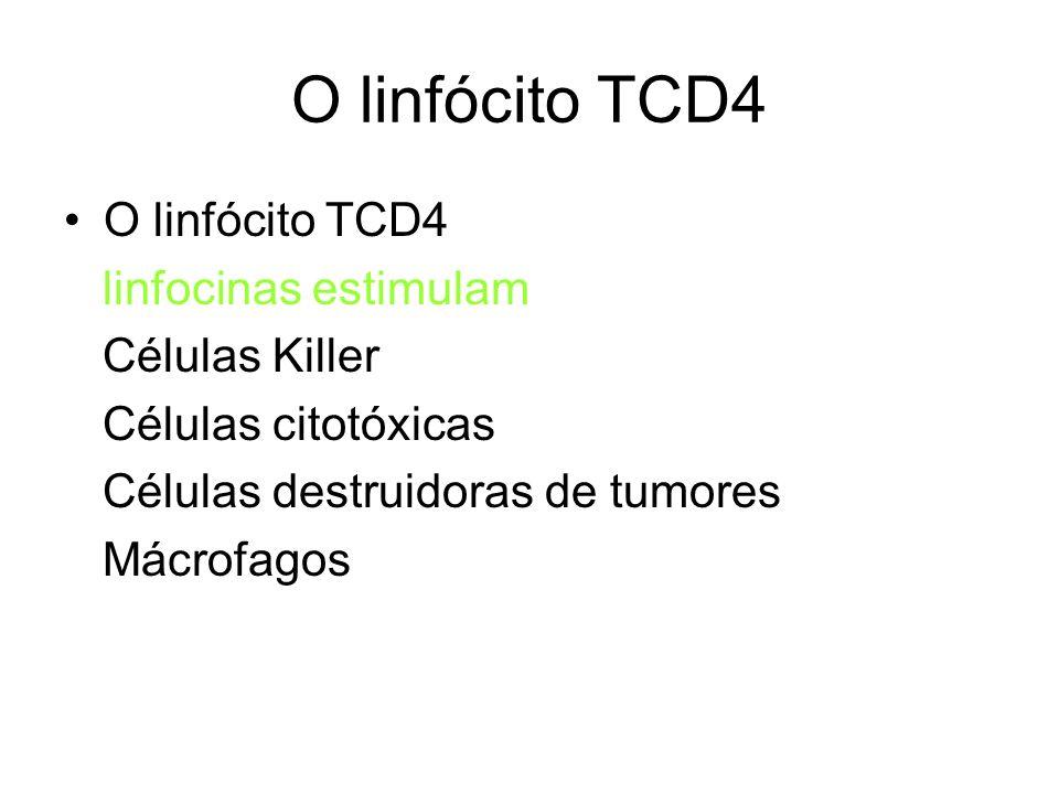 O linfócito TCD4 linfocinas estimulam Células Killer Células citotóxicas Células destruidoras de tumores Mácrofagos