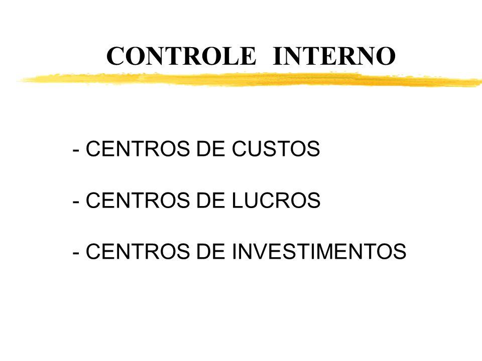 CONTROLE INTERNO - CENTROS DE CUSTOS - CENTROS DE LUCROS - CENTROS DE INVESTIMENTOS