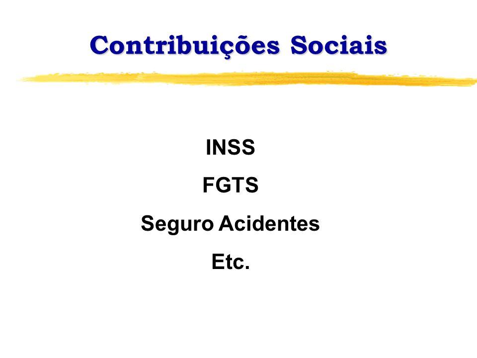 Contribuições Sociais INSS FGTS Seguro Acidentes Etc.