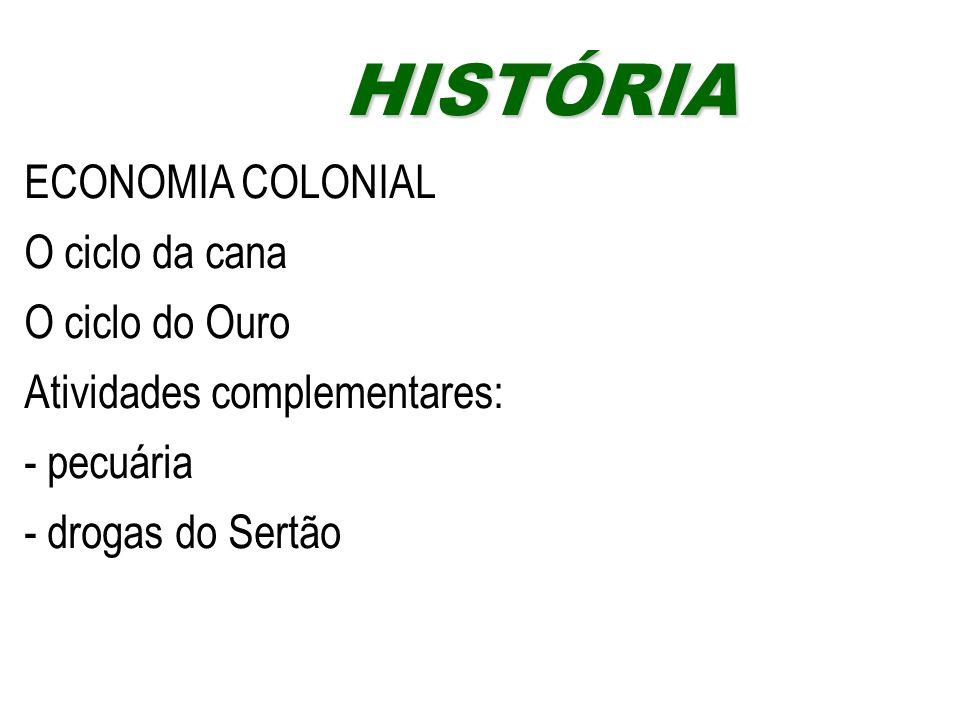 ECONOMIA COLONIAL O ciclo da cana O ciclo do Ouro Atividades complementares: - pecuária - drogas do Sertão HISTÓRIAHISTÓRIA