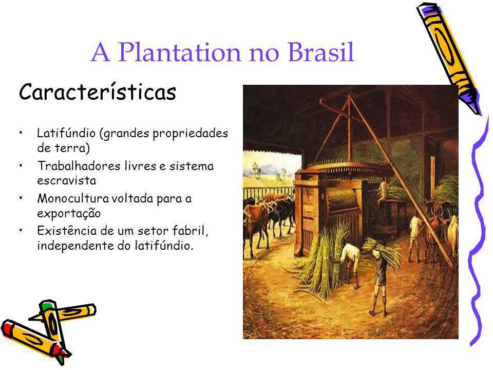 A Plantation no Brasil Características Latifúndio (grandes propriedades de terra) Trabalhadores livres e sistema escravista Monocultura voltada para a