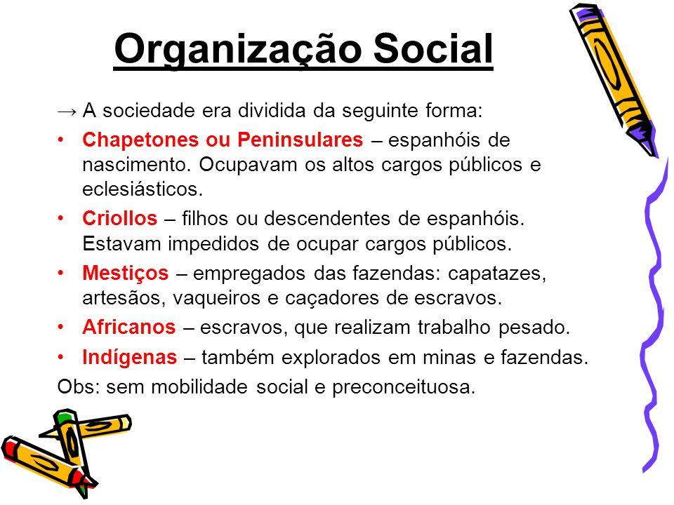 Organização Social A sociedade era dividida da seguinte forma: Chapetones ou Peninsulares – espanhóis de nascimento. Ocupavam os altos cargos públicos