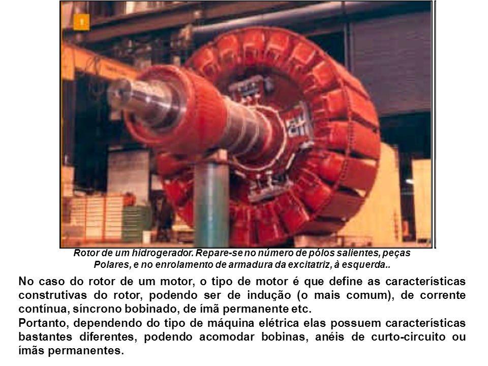 Rotor de um hidrogerador. Repare-se no número de pólos salientes, peças Polares, e no enrolamento de armadura da excitatriz, à esquerda.. No caso do r