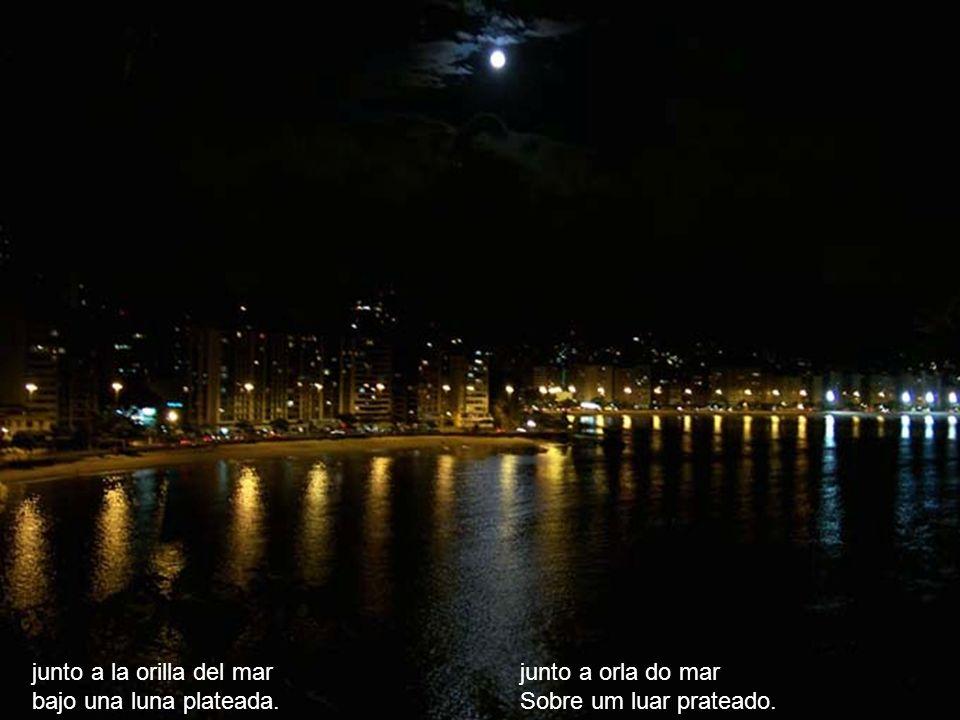 junto a la orilla del mar bajo una luna plateada. junto a orla do mar Sobre um luar prateado.