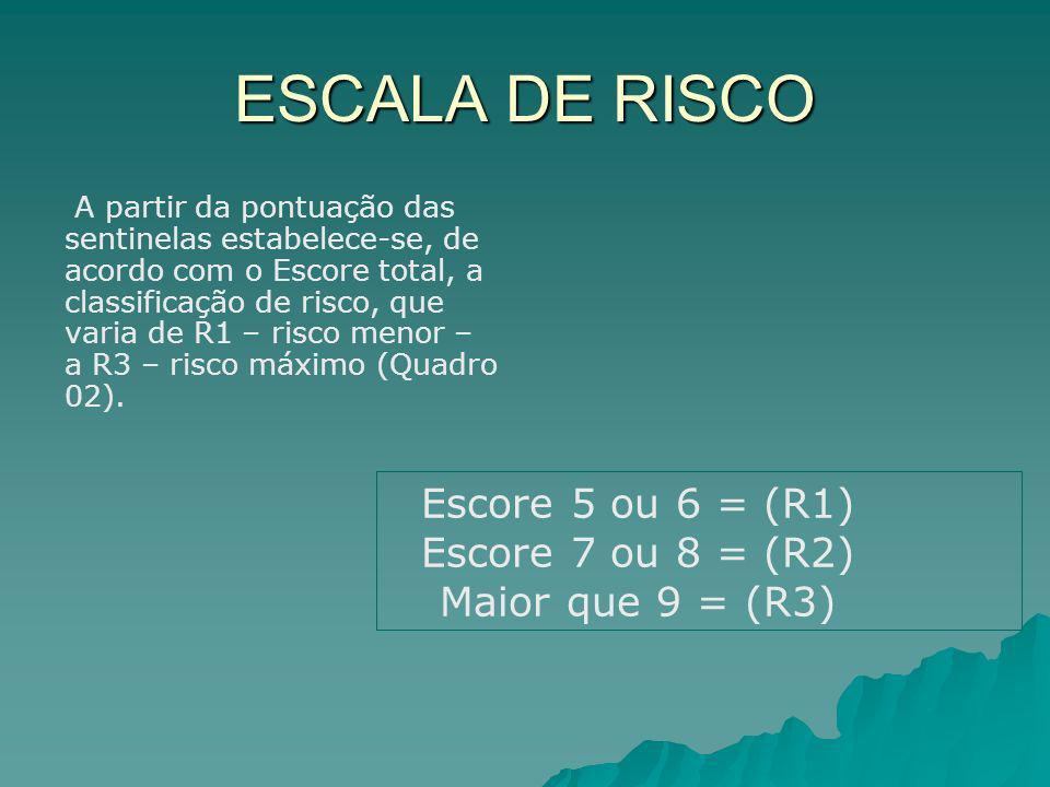 ESCALA DE RISCO A partir da pontuação das sentinelas estabelece-se, de acordo com o Escore total, a classificação de risco, que varia de R1 – risco me