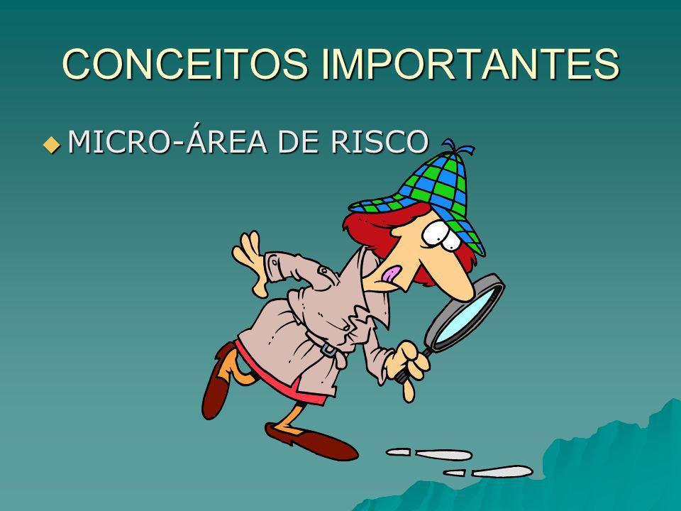CONCEITOS IMPORTANTES MICRO-ÁREA DE RISCO MICRO-ÁREA DE RISCO –É todo o lugar, setor, no território da comunidade, onde existe algum tipo de perigo para saúde das pessoas que moram ali.