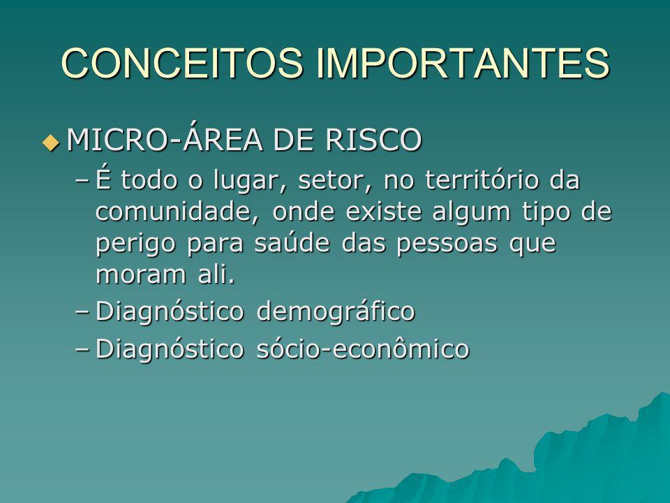 CONCEITOS IMPORTANTES MICRO-ÁREA DE RISCO MICRO-ÁREA DE RISCO –É todo o lugar, setor, no território da comunidade, onde existe algum tipo de perigo pa