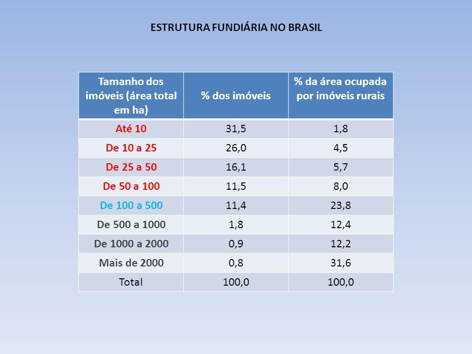 ESTRUTURA FUNDIÁRIA NO BRASIL Tamanho dos imóveis (área total em ha) % dos imóveis % da área ocupada por imóveis rurais Até 1031,51,8 De 10 a 2526,04,